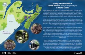 CPCIL eposter Eastern Waterfan Parks Canada